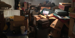 Junk Removal Cleanouts
